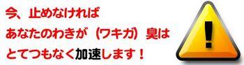 wakiga2.jpg